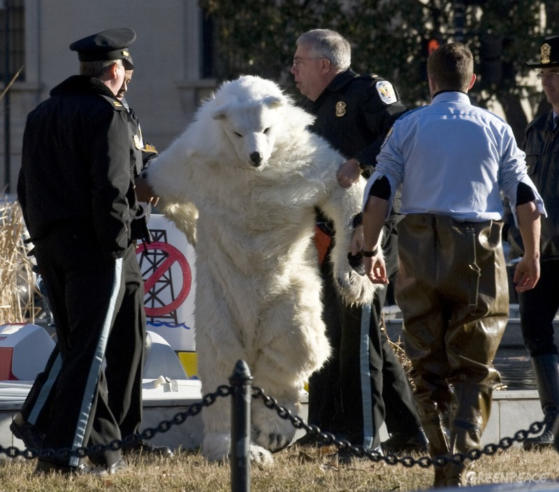 polar-bear-arrested.jpg