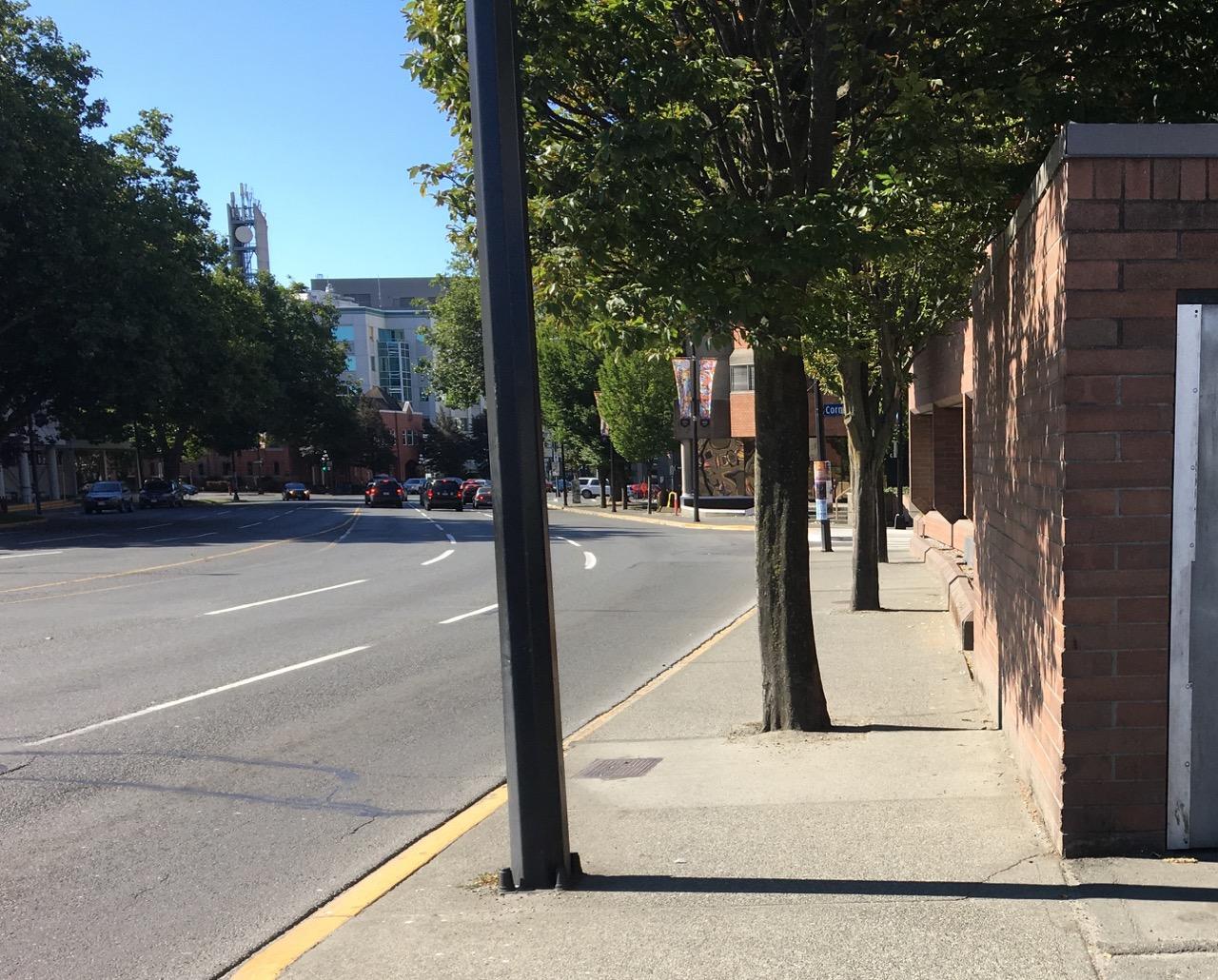 Blanshard sidewalk.jpg