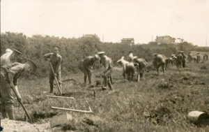 88th-digging-trench-Clover.jpg