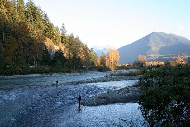 Vedder River.jpg