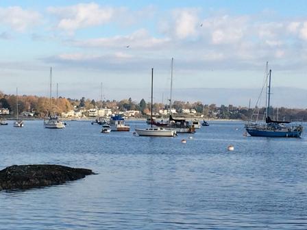Oak bay boats resized.jpg